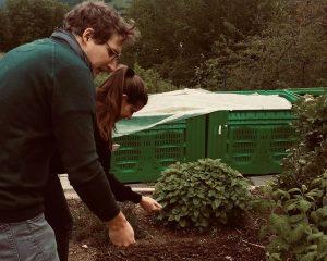 Gartenpflege und Pflanzen gießen für Hausbetreuung