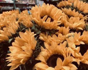 Frische Blumen bei Wohnungsbetreuung